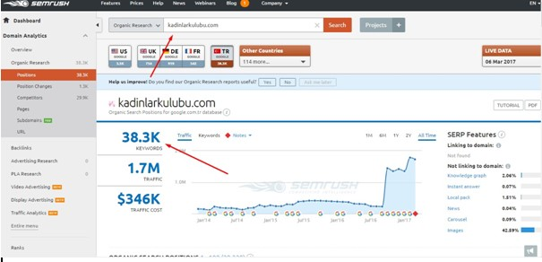 Google SEO Semrush Site Analizi